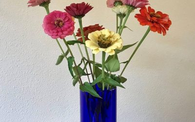 Bloemen maken blij